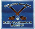 Carlow Town GAA Logo