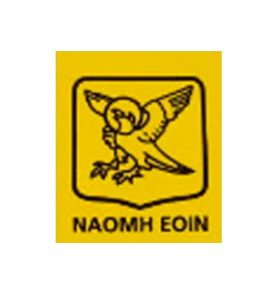 Naomh Eoin GAA