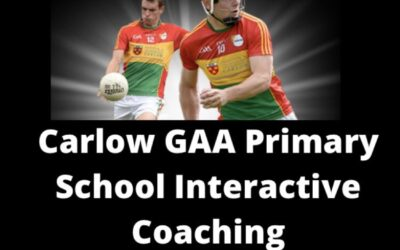 Online GAA Lessons for Primary Schools